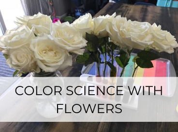 COLOR SCIENCE WITH FLOWERS