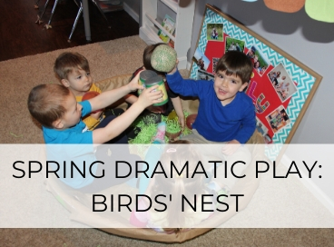 DRAMATIC PLAY BIRDS NEST