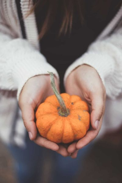 hands holding out mini pumpkin a sign of gratitude